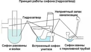 Гидрозатвор для канализации: цели применения, виды, проблемы