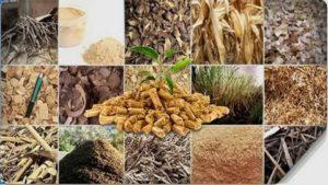 Биотопливо: как эффективно использовать отходы сельского хозяйства