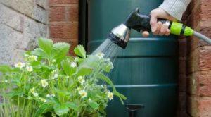 Водопровод для полива на даче – не дадим растениям засохнуть