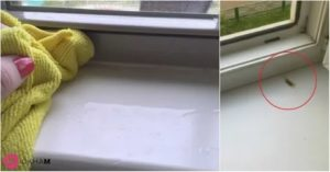 Чем отмыть подоконник пластикового окна от желтизны