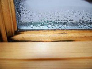 Запотевают деревянные окна внутри рамы