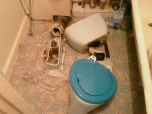 Как поменять унитаз в домашних условиях