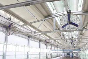 Вентиляция фермы – необходимость, виды и дополнительные условия работы